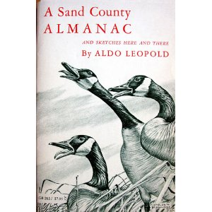 "Cover of ""A Sand County Almanac"""
